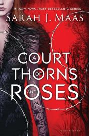 "Cover image for ""A Court of Thorns and Roses"""